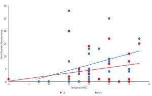 Scarab beetle abundance increases as temperature increases, at both dark and lit sites.